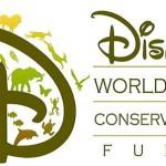 DisneyWide