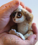 felted_slow_loris_by_dragonbehin-d5e0re5