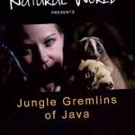 JungleGremlinsSM