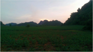 Vast agricultural area and home to a small Muong population