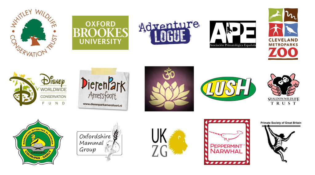 Logos SLOW copy