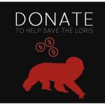 Donate Now copy